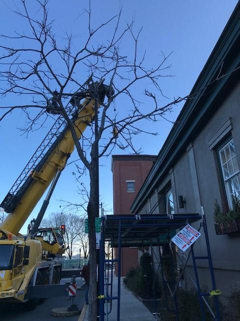 Crane used in Boston, MA, to replace a rooftop condenser unit on a parapet roof.
