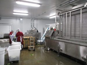 Chiller Plate Installation for Produce Processing Company in Chelsea, MA